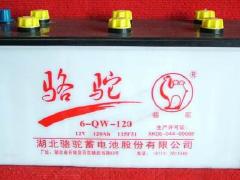 蓄电池电瓶骆驼风帆瓦尔塔,宜昌上门安装服